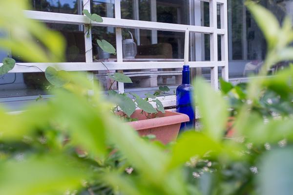 Hostel Urbano_Costa Rica_Manuela Doerr-8