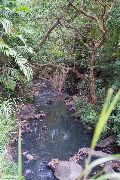 UCR_Costa Rica_Manuela Doerr-11