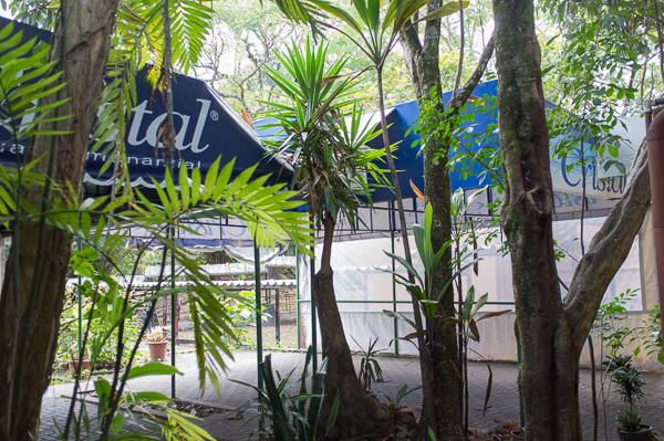 UCR_Costa Rica_Manuela Doerr-12
