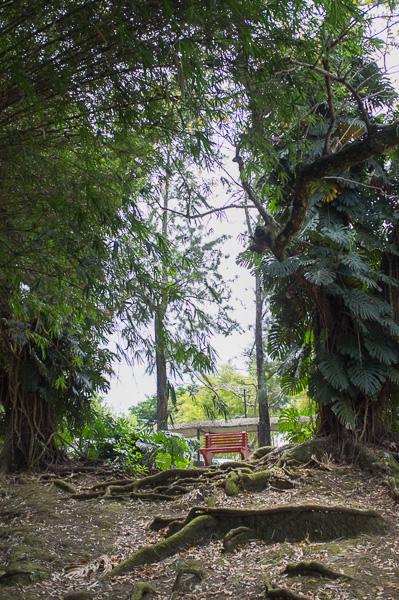 UCR_Costa Rica_Manuela Doerr-14