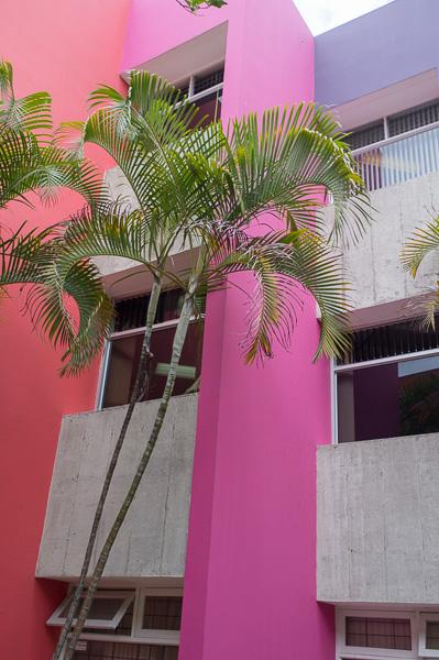 UCR_Costa Rica_Manuela Doerr-3
