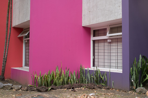 UCR_Costa Rica_Manuela Doerr-4
