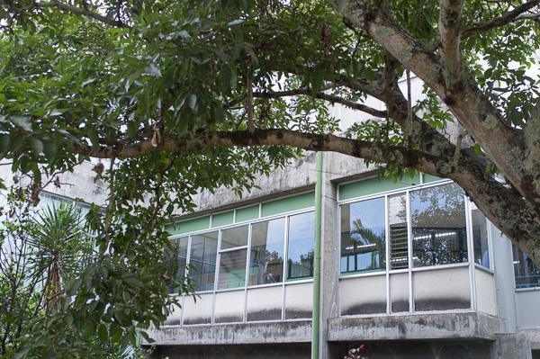 UCR_Costa Rica_Manuela Doerr-9