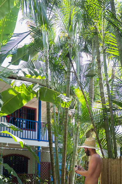 Hostel Beds on Bohio Costa Rica Manuela Doerr-1