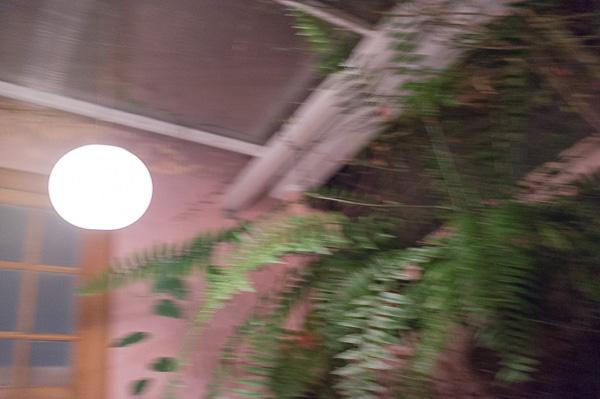 Museumsnacht Costa Rica Manuela Doerr-9
