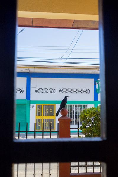 Puntarenas Costa Rica Manuela Doerr-48
