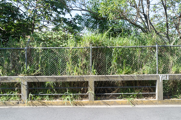 San Jose Costa Rica Manuela Doerr-4