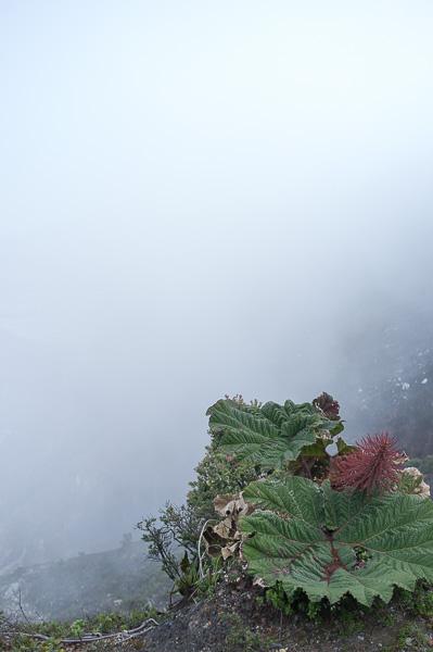 Volcan Poas San jose Manuela Doerr-8