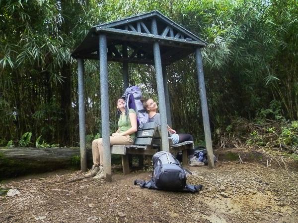 Chirripo Costa Rica-5