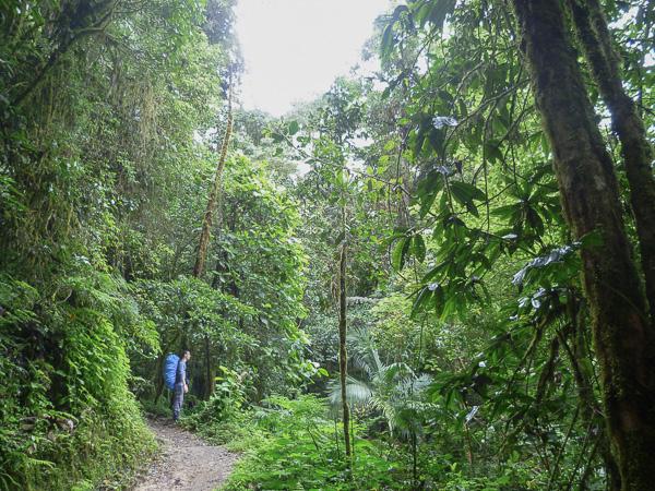 Chirripo Costa Rica-8