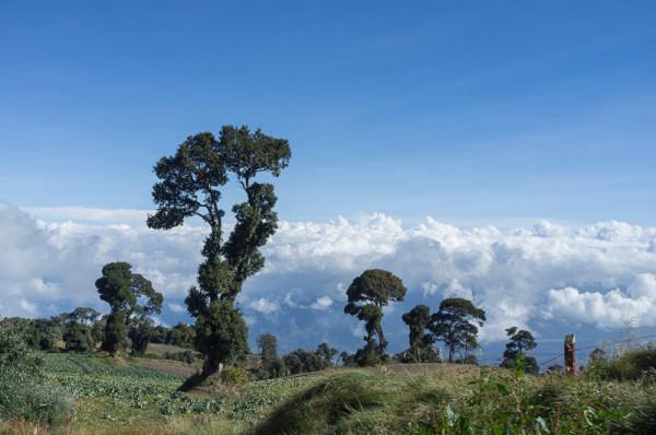 Vulkan Irazu Costa Rica Manuela Doerr-24