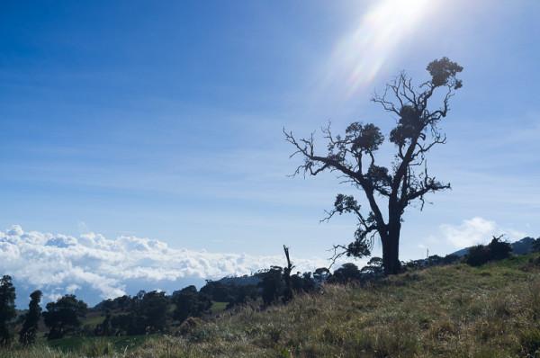 Vulkan Irazu Costa Rica Manuela Doerr-25
