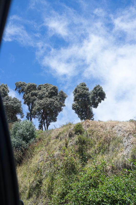 Vulkan Irazu Costa Rica Manuela Doerr-4