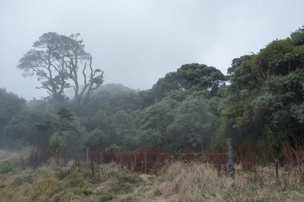 Vulkan Irazu Costa Rica Manuela Doerr-7
