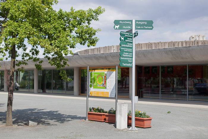Tierheim Berlin ManuelaDoerr-4