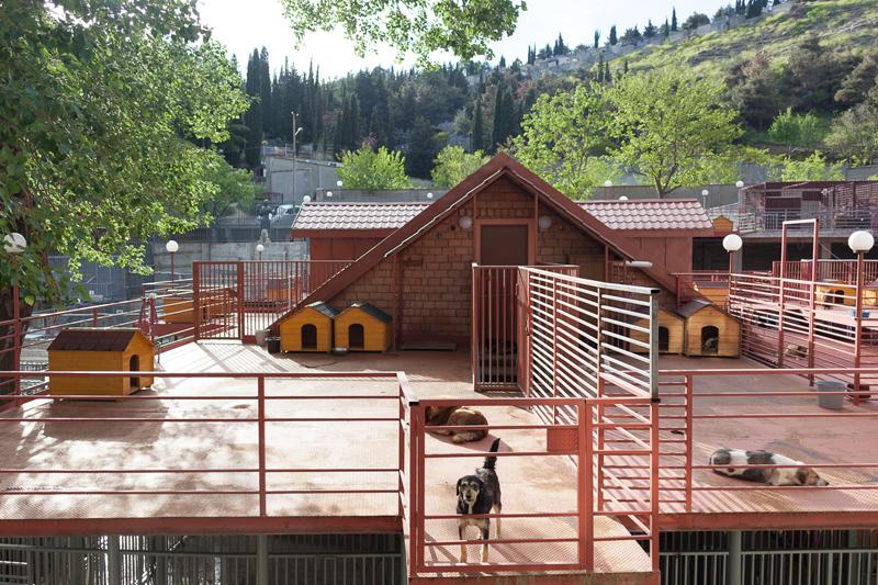 Tamaz Shelter ManuelaDoerr-3k