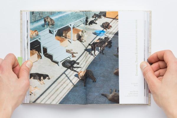 Manuela-Doerr-2924-Hunde-und-10-Tierheime-2