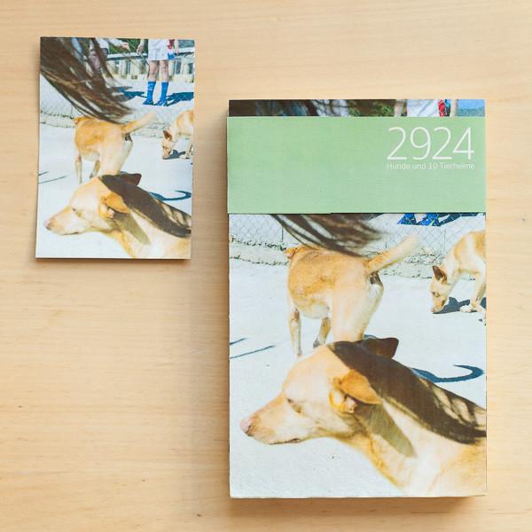 Buchcover Dummy-5